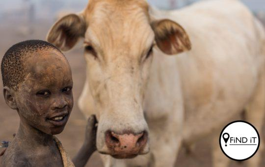 Their whole life revolves around their cattle. They use them as mediums to contact the god Ngun.